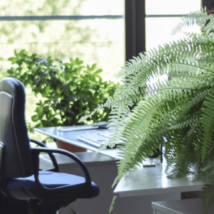 Office chair at desk by the window