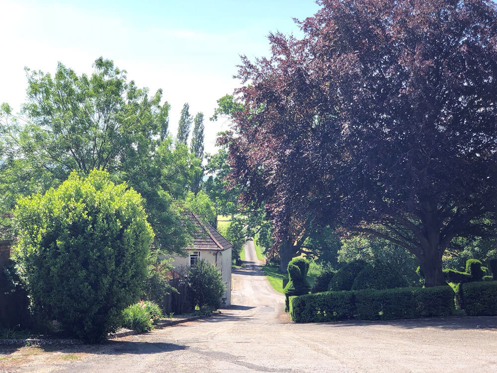 Heywood House Wiltshire Driveway